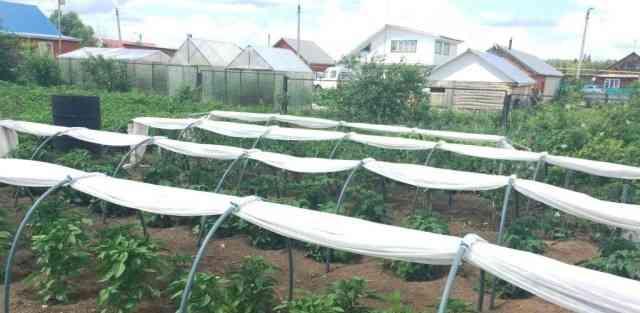 Продается новый парник для огорода