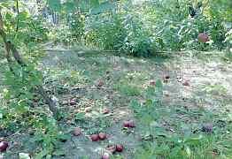 Продаю садовый инвентарь