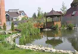 Садовые бассейны и водоемы