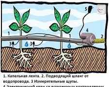 Автополив ого-Родник-1 с датчиком влажности почвы