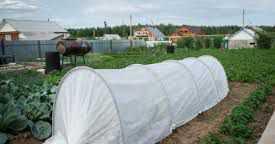 Парник Подснежник, длина 6 м
