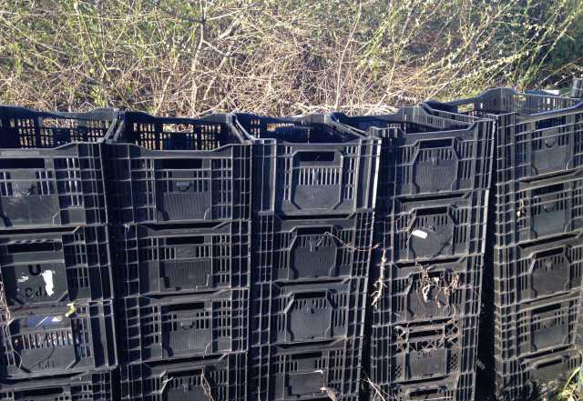 Ящики пластиковые