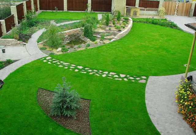 Элементы ландшавта газоны, лужайки