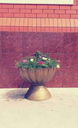 Вазоны, цветочница, ваза (с доставкой)