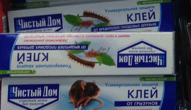 Уничтожение муравьев, мышей крыс, клещей, клопов г