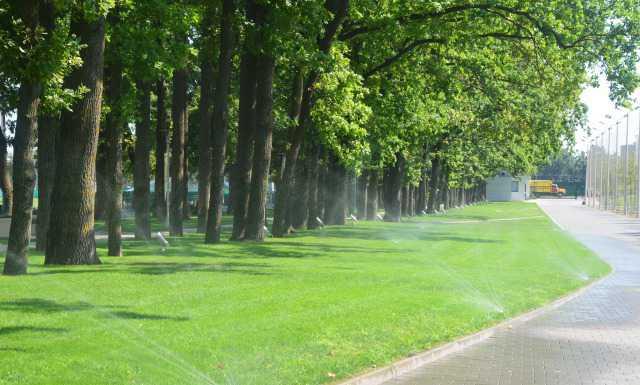 Автоматический полив газона Rain Бирд